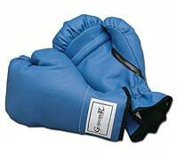 Gladiator Youth Boxing/Training Glove-8oz