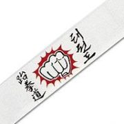 Karate Headband Fist