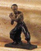 Kung Fu Fighter-E
