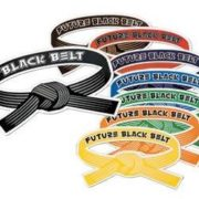 Belt Magnets