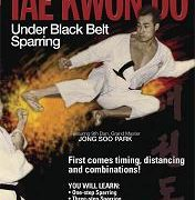 Under Black Belt Sparring