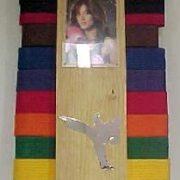 Photo Wall Belt Display Rack