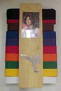 Photo Wall Belt Display Rack
