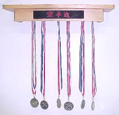 Martial Arts Medals Award Rack