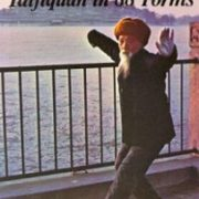 Taijiquan in 88 Forms