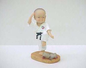 Karate Kid D