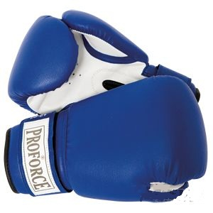 Boxing Gloves - Blue