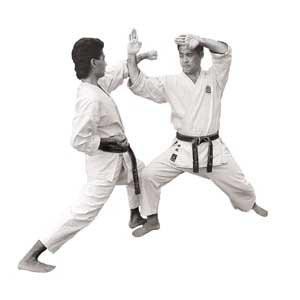 Shotokan Sparring Techniques