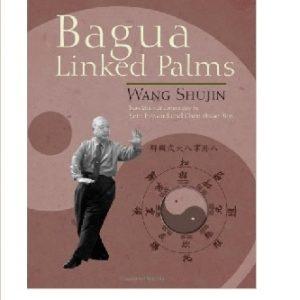 https://martialartssupermarket.com/wp-content/uploads/2015/03/Bagua-Linked-Palms-300x300.jpg Baguazhang