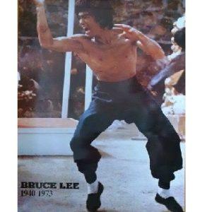 Bruce Lee Stance