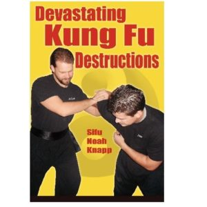 Devastating Kung Fu Destructions