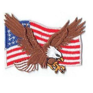 Eagle wFlag