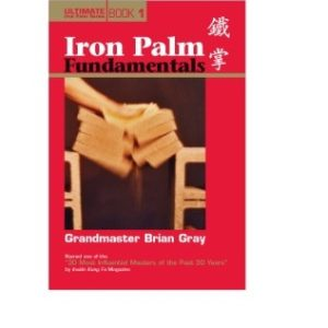 Iron Palm Fundamentals Book 1