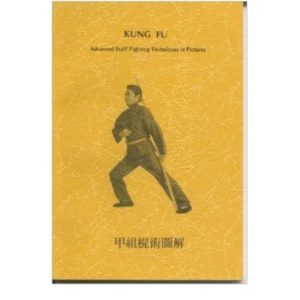 kung fu fighting techniques pdf