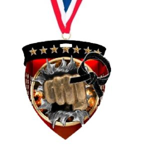 Martial Arts Full Color Medal