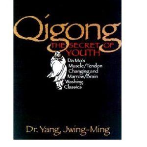 Qigong The Secret of Youth