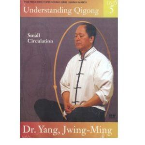 Understanding Qigong 5-DVD