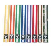 Colored Stripped Belts